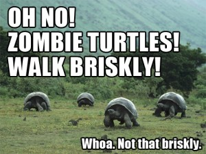 Zombie Turtles