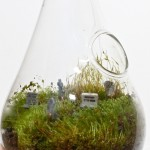 Cemeterrarium
