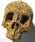 Spice Skull