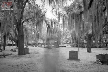 Cemetery Prints
