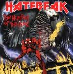 Hatebeak Logo